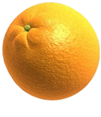 fruit warp orange