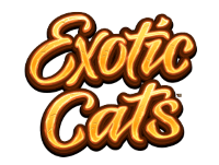 exotic cats slot machine